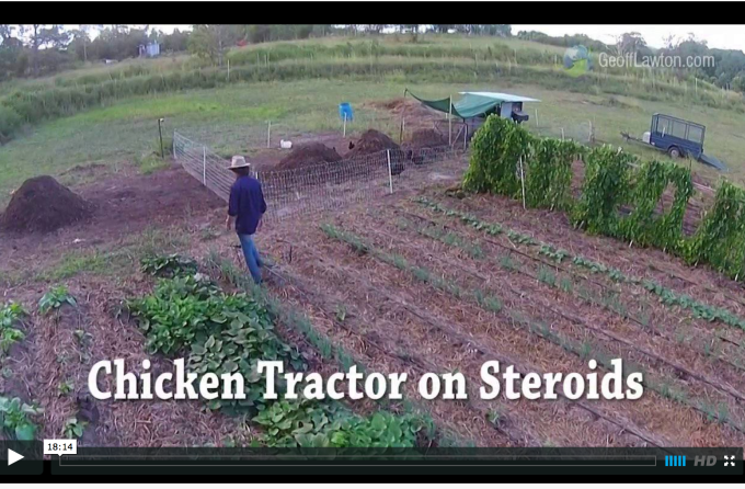Chicken tractor on Steroids