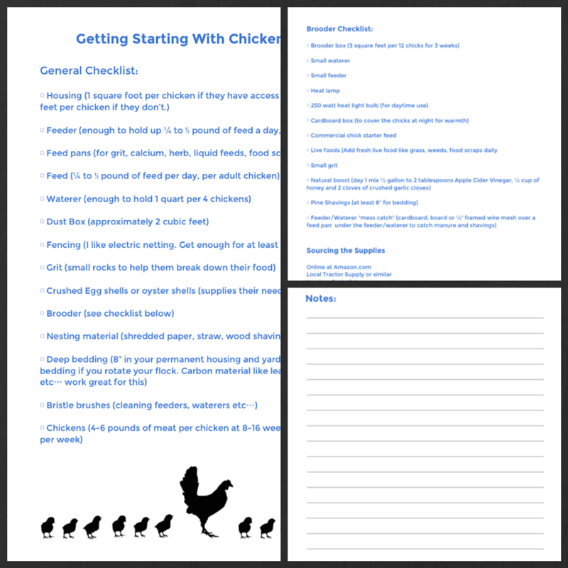 Getting Started with Chickens: The Ultimate Guide - Abundant ...