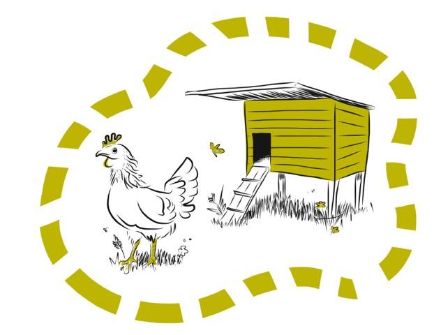 chicken-coop-composite