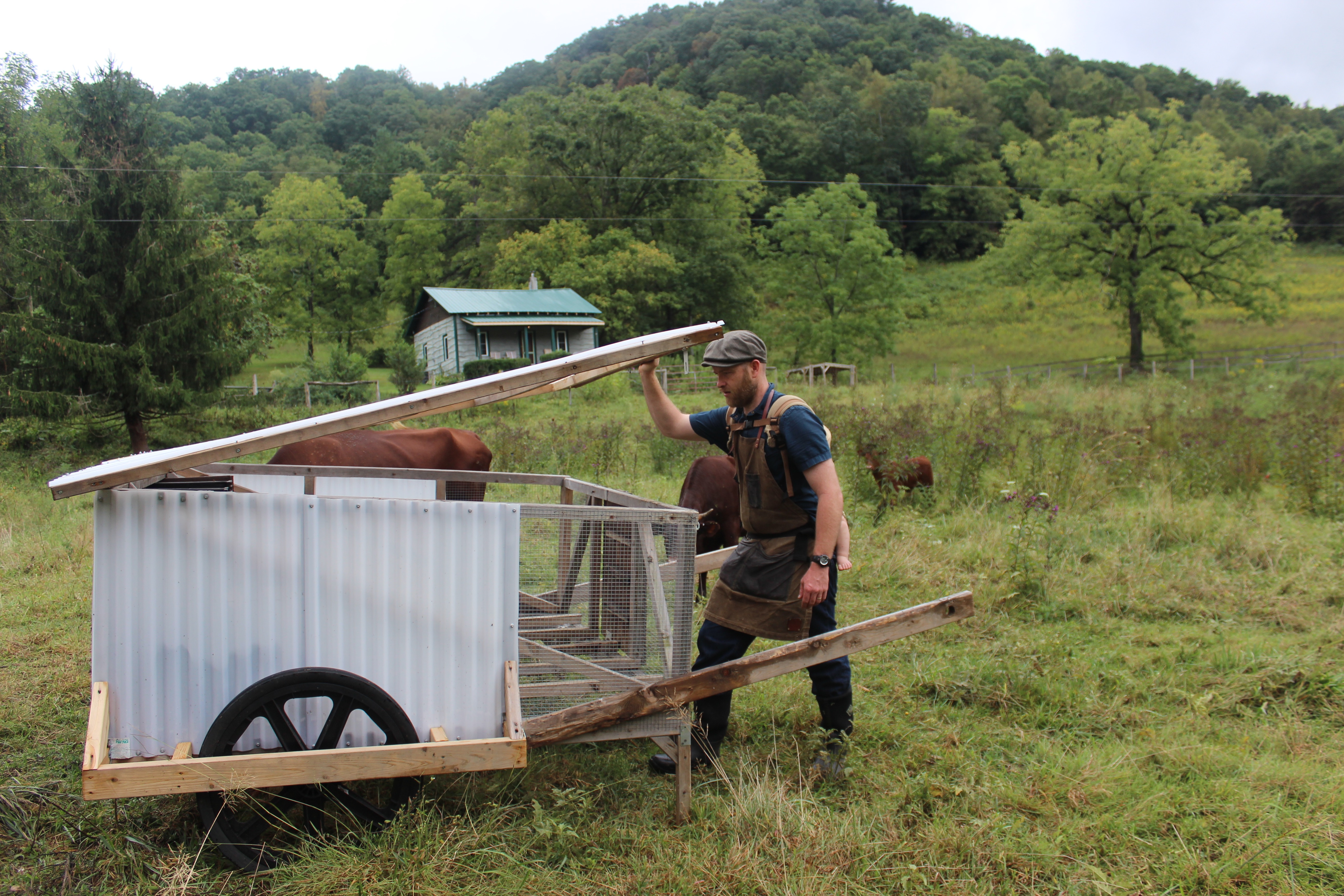 Finally A Mobile Chicken Coop One Person Can Easily