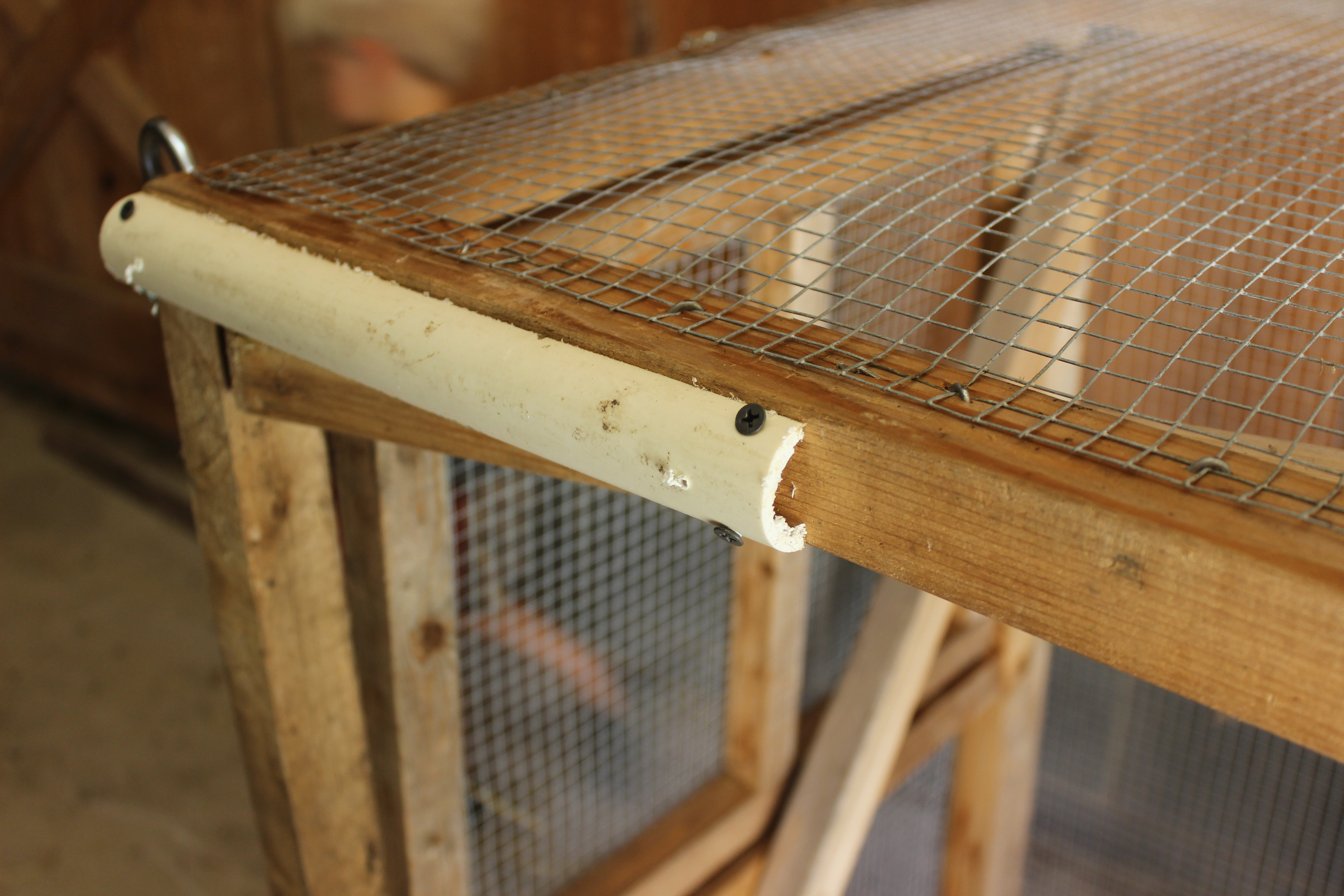 Diy Chicken Tractor For Less Than 200 Abundant Permaculture How To Install Surfacemounted Wiring And Conduit The Homestead Img 1129