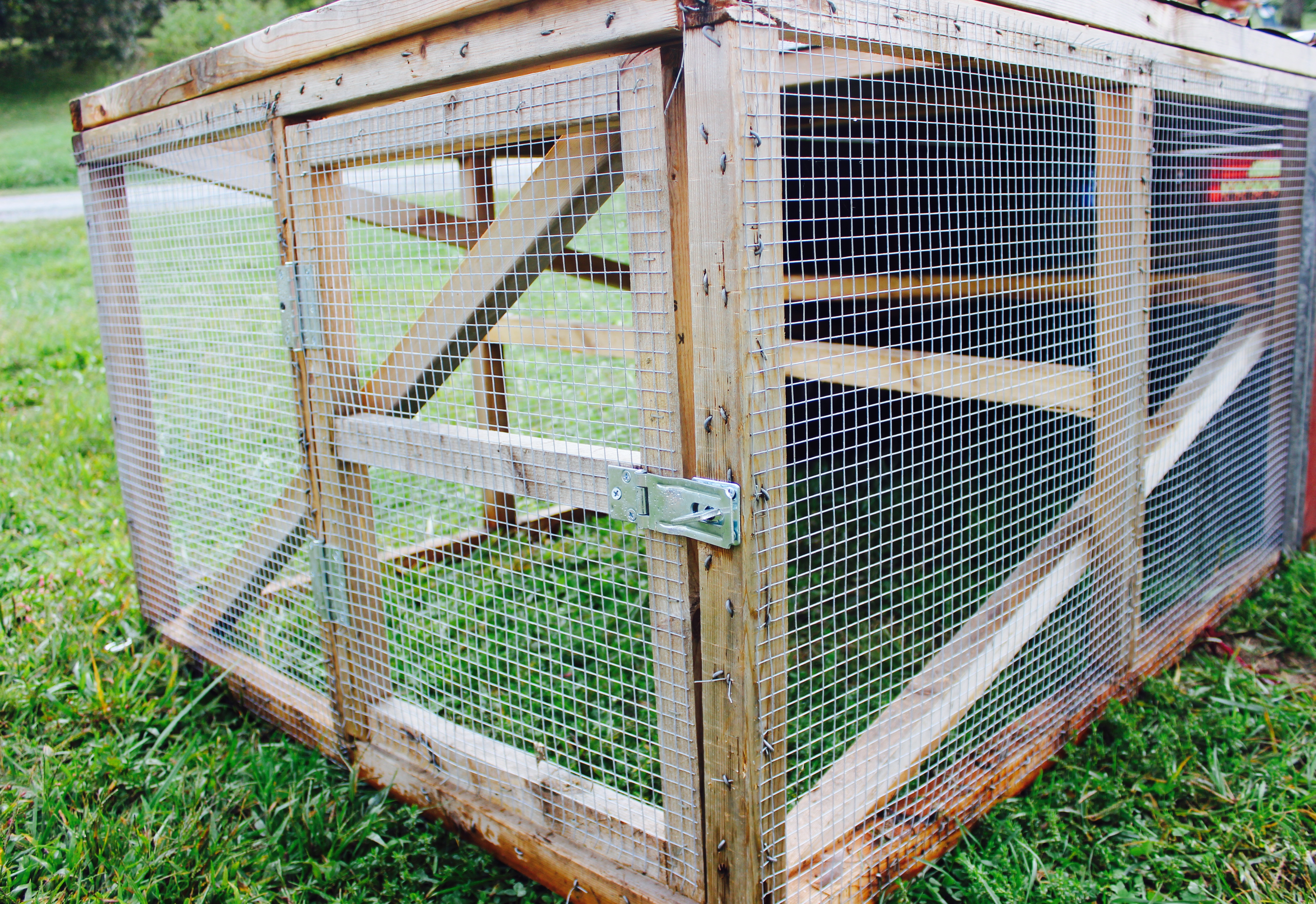 DIY Chicken Tractor for Less Than $200 - Abundant Permaculture