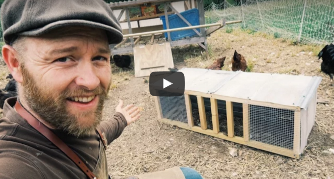Day 21 – THE CHICKEN CRIB