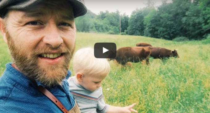 Day 25 – My Family Cow Explained